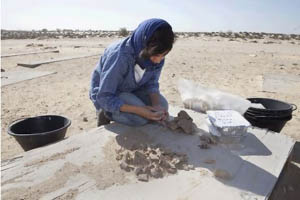 UAE Sites Reveal First Signs of Camel Domestication