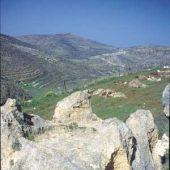 bamah-shiloh