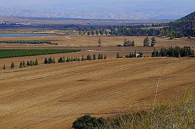 tel-jezreel-naboth-vineyard