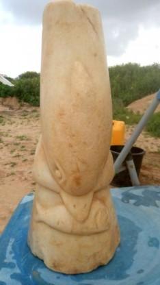 magen-dolphin